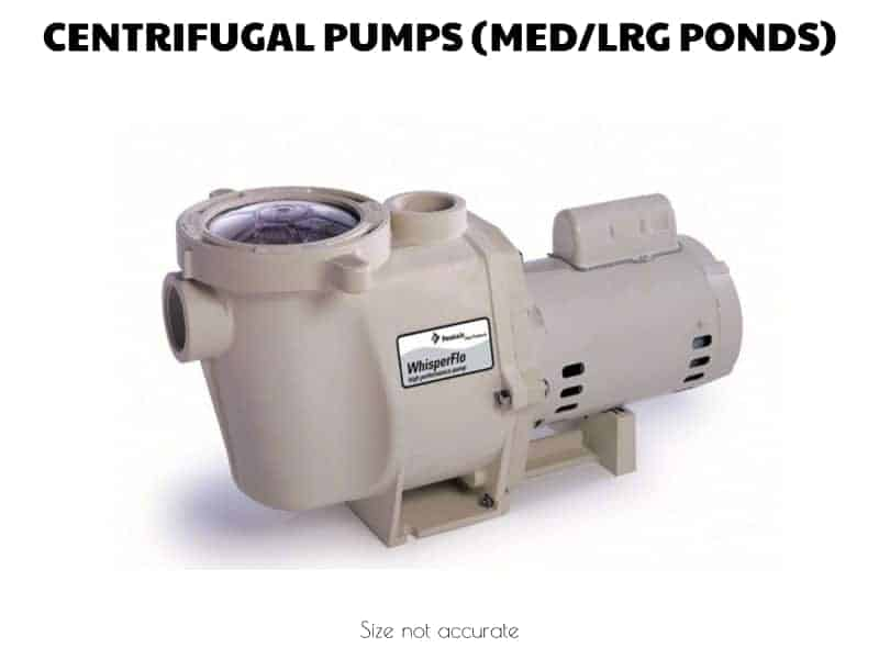 pentair koi pond pump