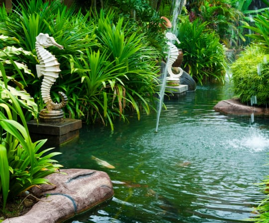 seahorses in a pond with fountains